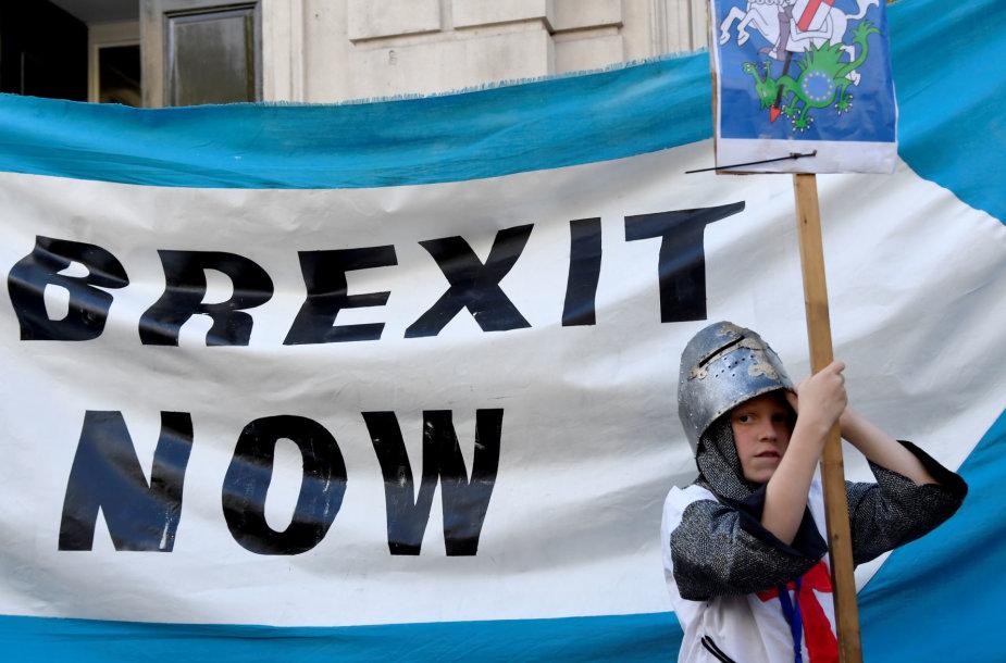 """Už """"Brexit"""" pasisakantis demonstracijos dalyvis"""