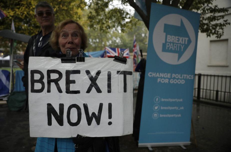 """""""Brexit"""" rėmėja"""