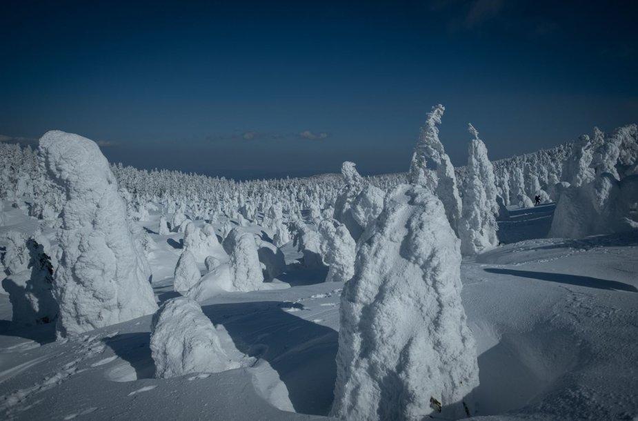 """Sniego monstrai"" Japonijoje"