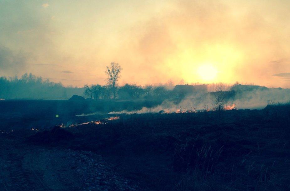 Prasidejo žolės deginimo sezonas .