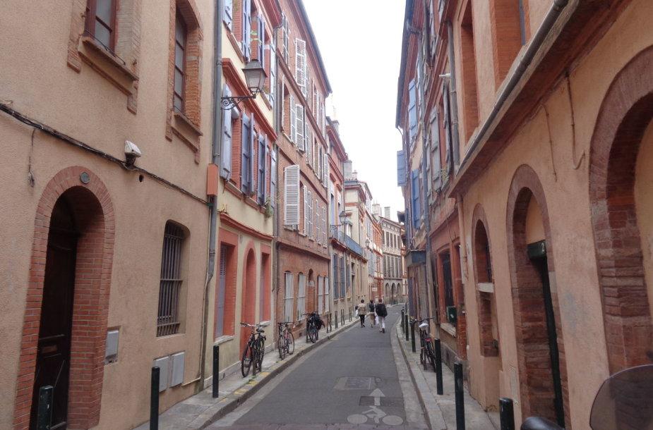 Rausvuoju miestu dėl vyraujančios pastatų spalvos vadinama Tulūza