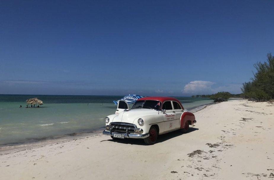 Kubos egzotika