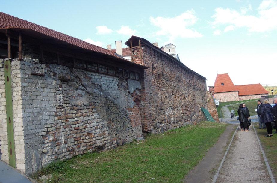 Vilniaus gynybinė siena