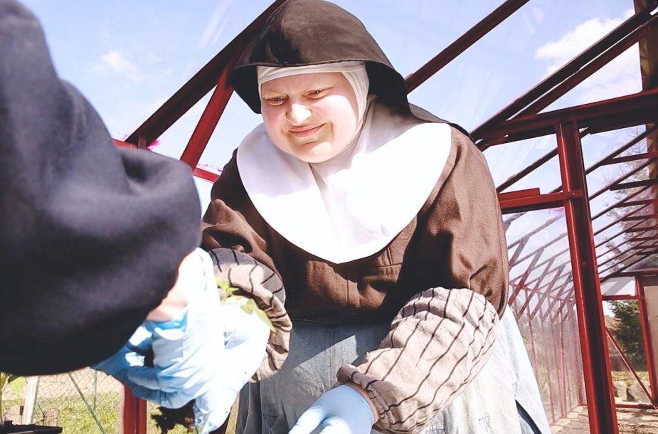 Sesuo Klara darbuojasi darže