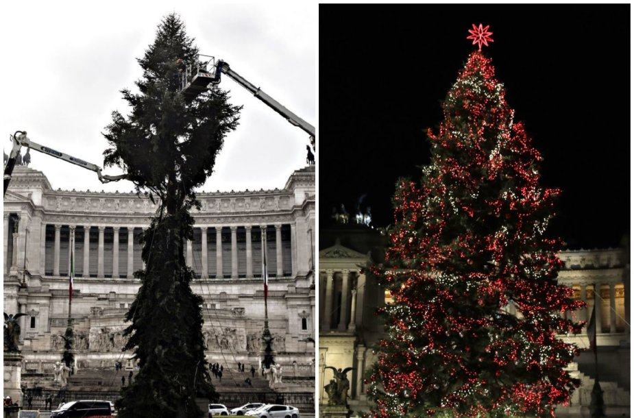 Romos Kalėdų eglė