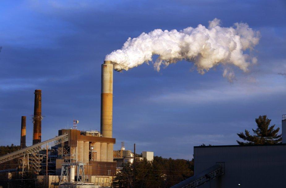 Anglimi kūrenamos elektrinės – tarp didžiausių aplinkos teršėjų.