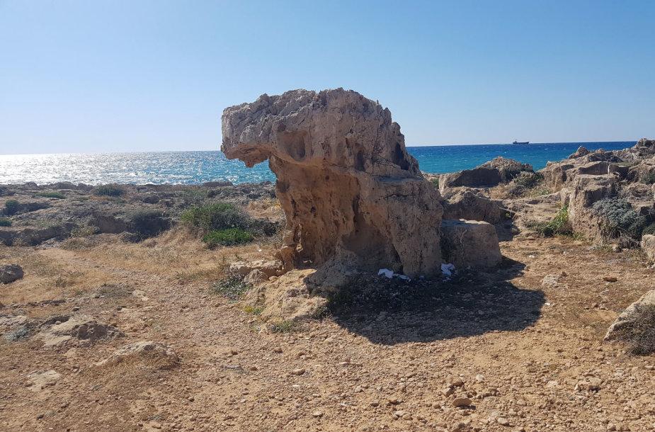 Atostogos Kipre, Pafoso mieste.
