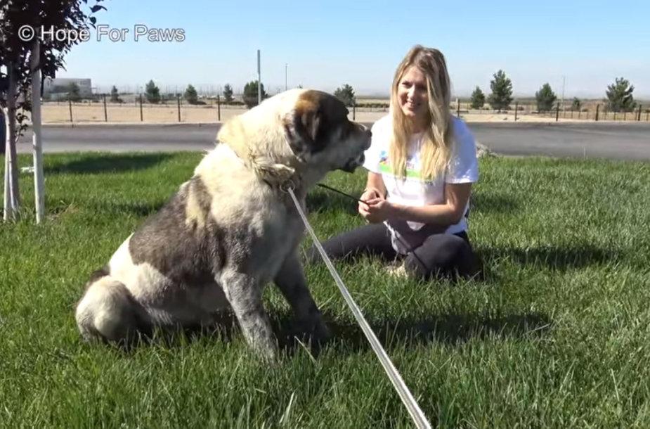 Loreta Frankonytė su benamiu šunimi