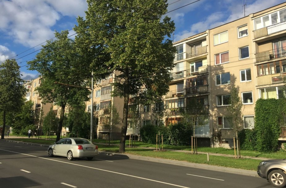 Naujai pasodinti medžiai Antakalnio gatvėje