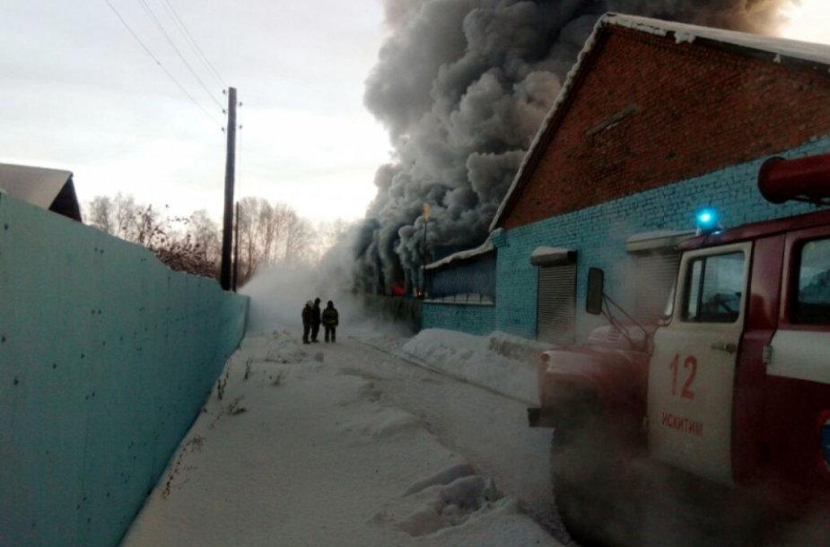 Per gaisrą prie Novosibirsko žuvo 10 kinų darbininkų