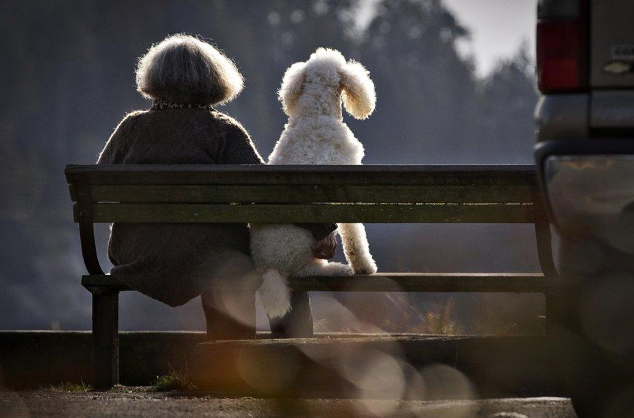 Šunys ir jų šeimininkai