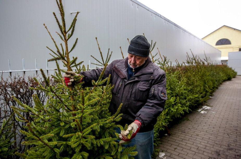 Prekyba kalėdinėmis eglutėmis Kalvarijų turguje