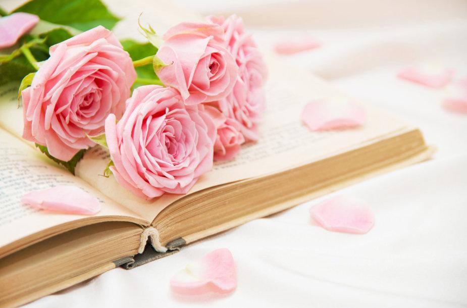 Rožės ir knyga