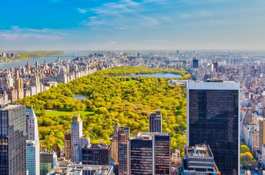 Centrinis parkas Niujorke