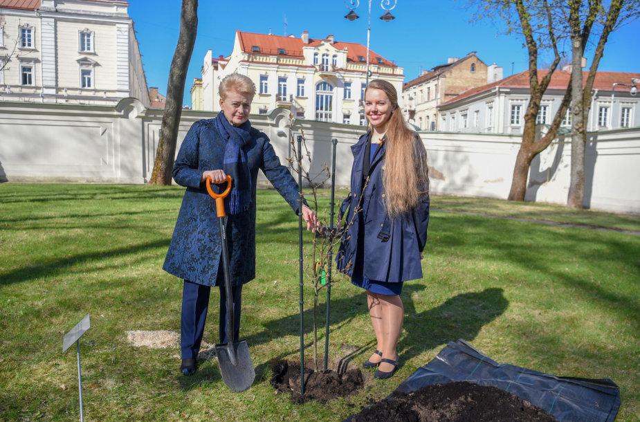 Šalies vadovė Prezidento rūmų parke pasodino ąžuoliuką valstybės atkūrimo šimtmečio garbei