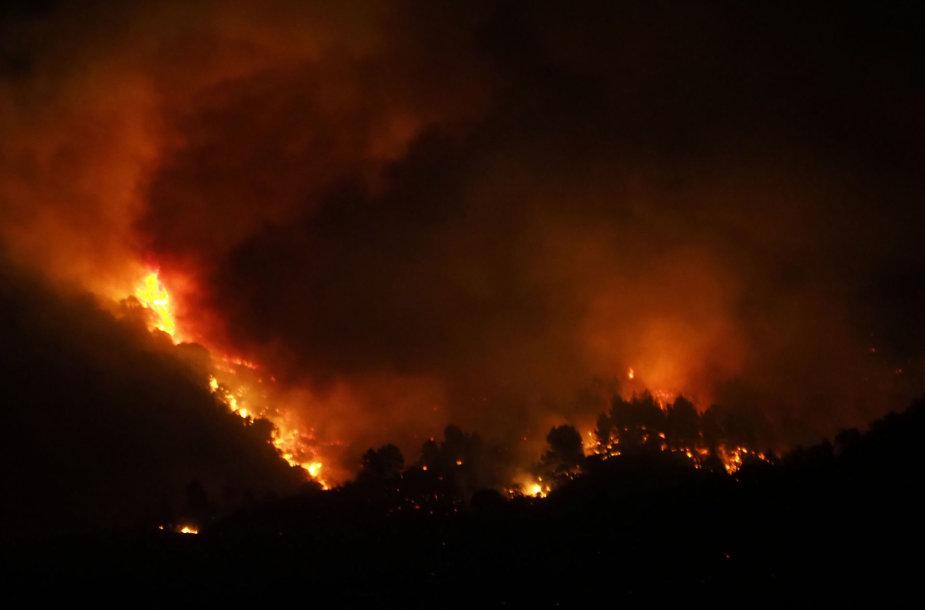 Miško gaisras Prancūzijoje