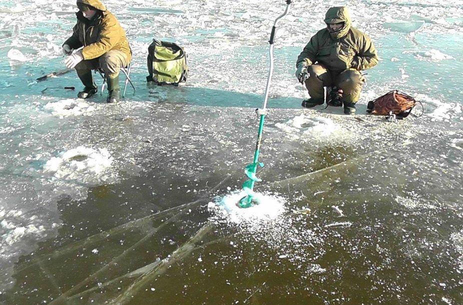Poledinės žūklės aistruoliai jau įsikūrė ant Kuršių marių ledo.