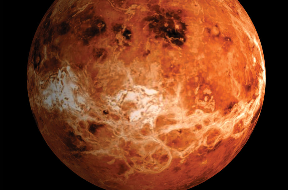 Veneros paviršius