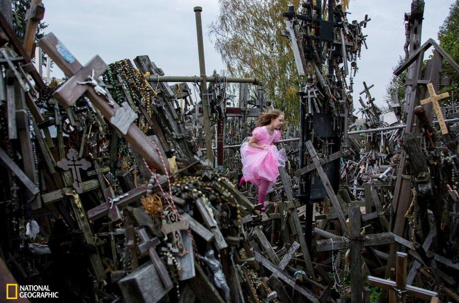 """Garbės raštu apdovanota Hideki Mizuta. Nuotrauka """"Hill of Crosses"""", fotografuota Šiaulių r., Lietuvoje."""