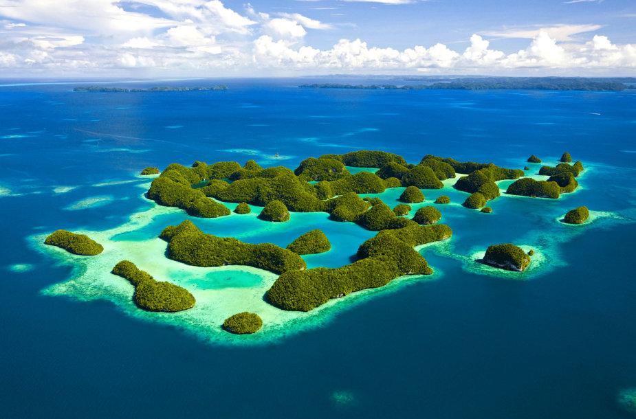 Egzotiškasis Palau salynas