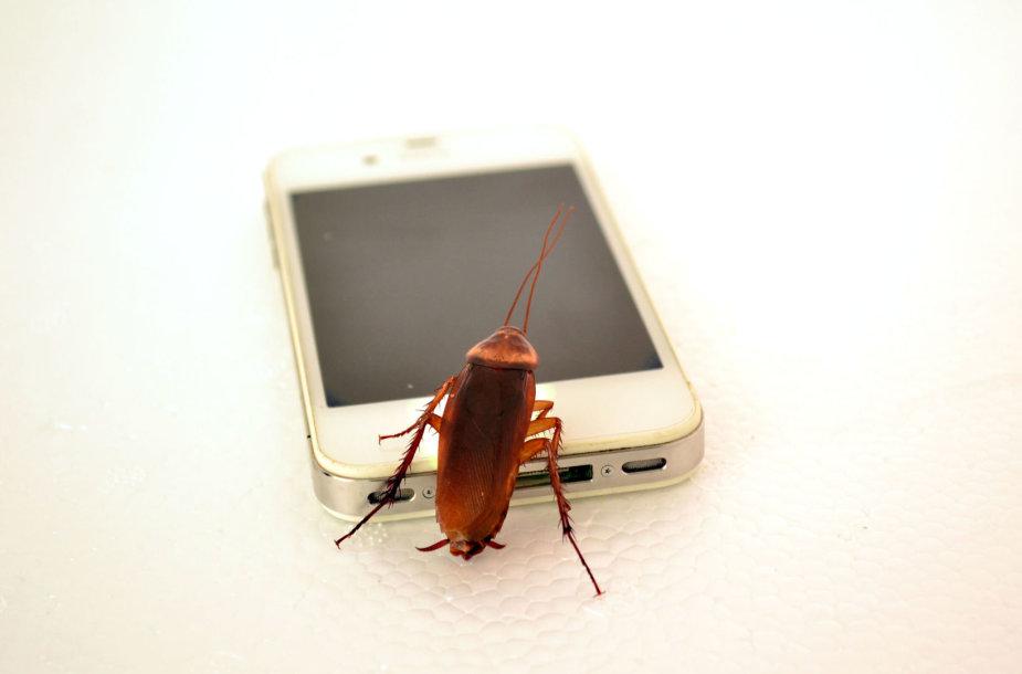 Telefonas ir higiena – ne visada suderinami