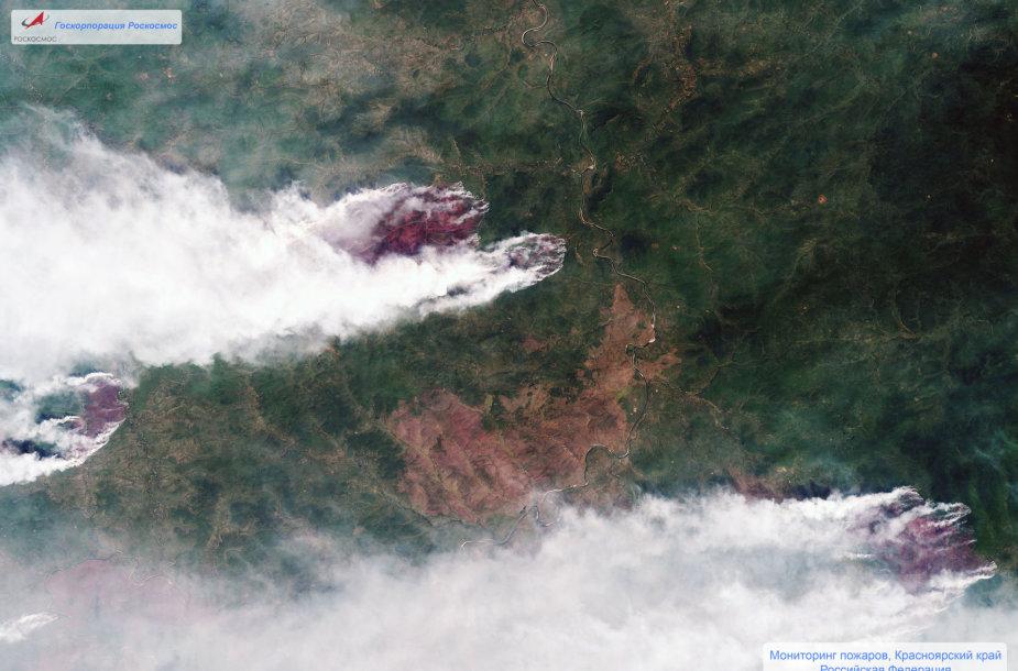 Miško gaisras Sibire