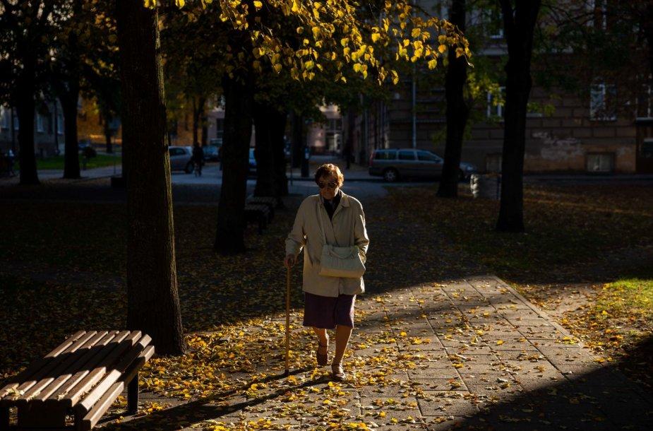 Šiltas ir gražus ruduo Vilniuje