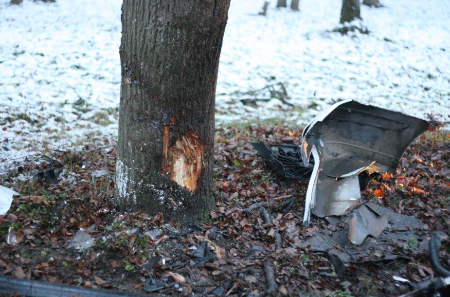 """Žagarėje visiškai sudegė  į medį atsitrenkęs """"Citroen C5"""" – vairuotojas spruko"""