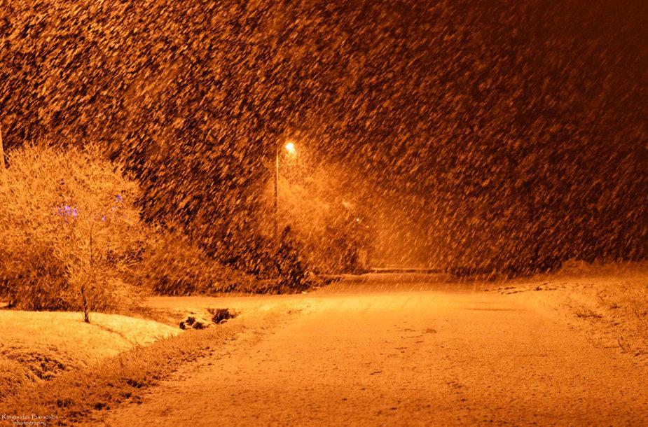 Sniegas Žemaitijoje
