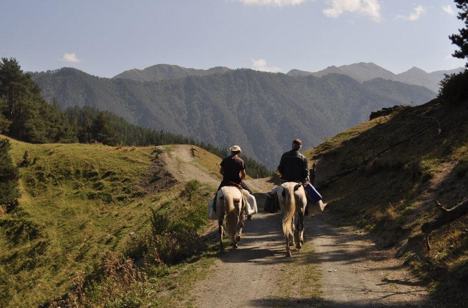 Vienas pagrindinių transportų Tušetijoje