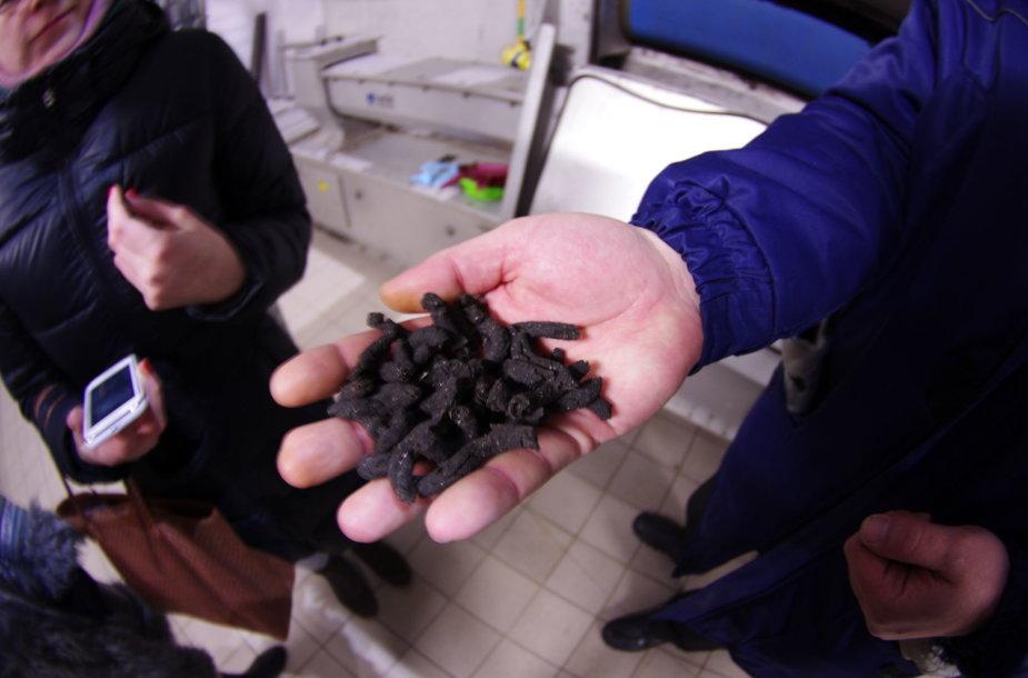 Dumblo atsikratoma ir jį džiovinant. Per parą valykloje susidaro 70–80 tonų dumblo. Įjungus džiovyklą, lieka vos 30 tonų sausų bekvapių granulių.