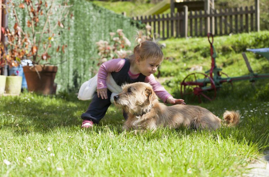 Šuo ir vaikas