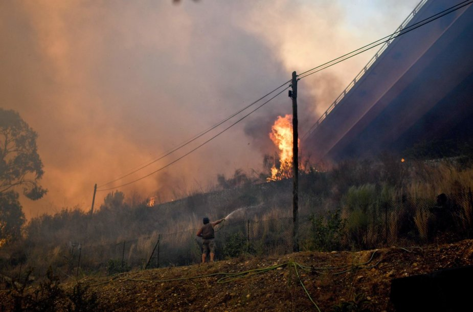 Miško gaisras Portugalijoje