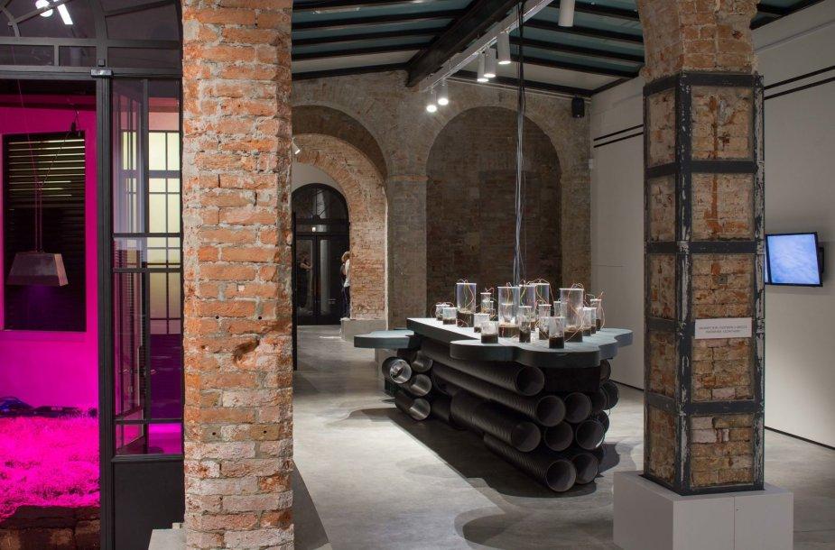 Lietuvos paviljonas Venecijos architektūros bienalėje