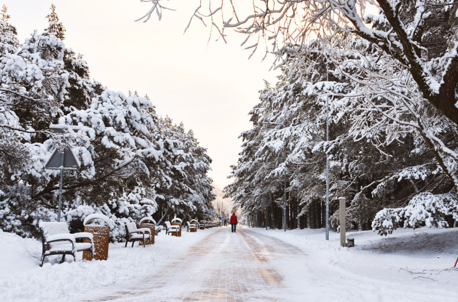 Snieguota Palanga
