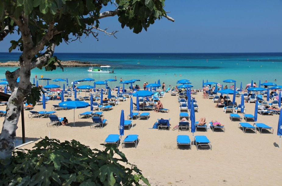 Fig Tree Bay, Kipras