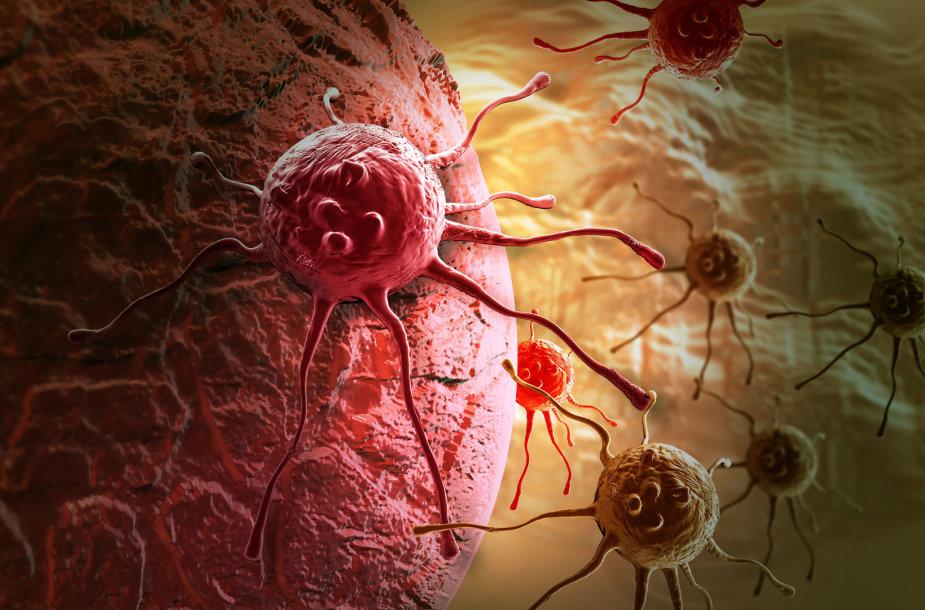 Vėžys