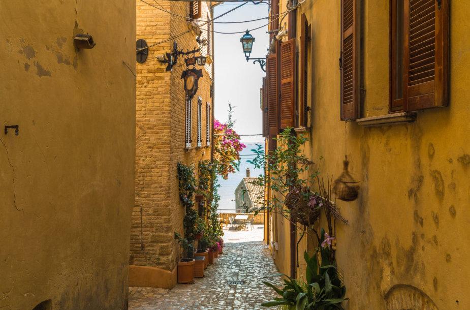 Markė, Italija