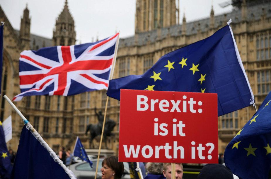 """""""Brexit"""" priešininkai prie Didžiosios Britanijos parlamento"""