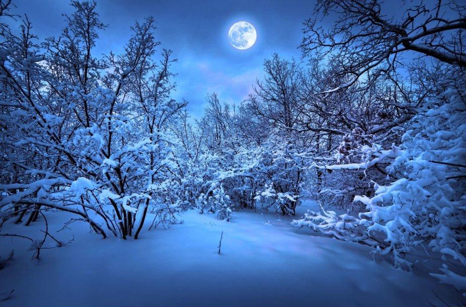 Žiemos vakaras