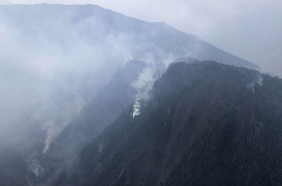 Kinijos kalnuose suvaldytas 30 ugniagesių pražudęs miško gaisras
