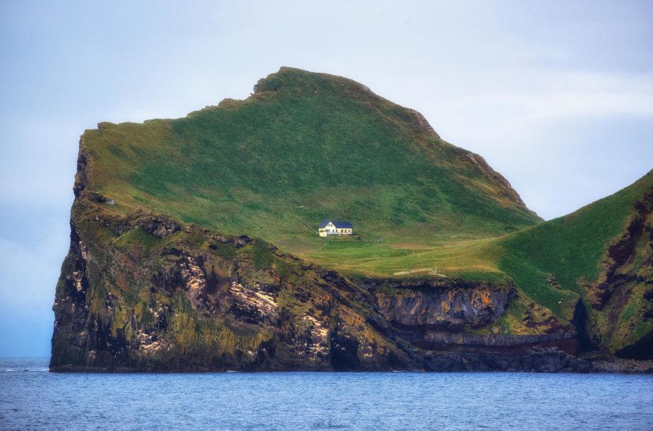 Elliðaey sala Islandijoje