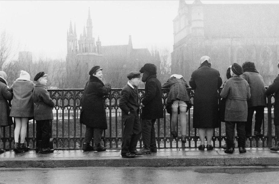 Užupio gimnazistai, 1959 m.