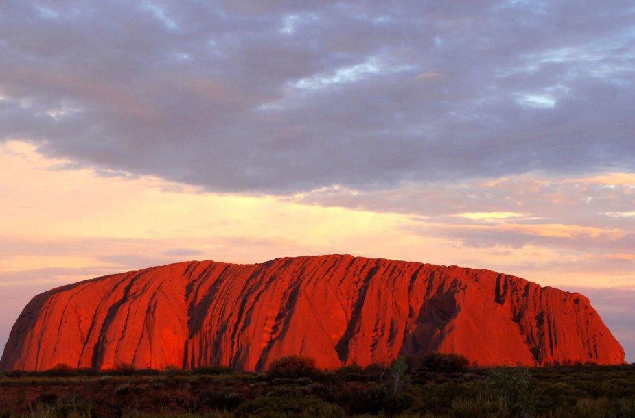 Uluru uola