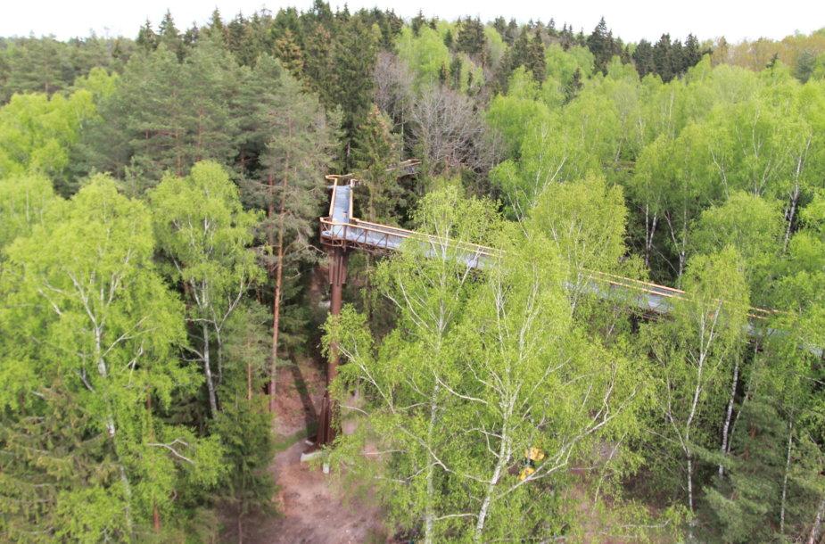 Medžių lajų takas iškyla iki 21 metro aukščio ir medžių viršūnėmis vingiuoja apie 300 metrų. Anykščių regioninio parko nuotr.
