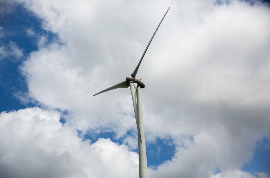 Artūro Skardžiaus sklypas ir vėjo jėgainių parkas Šilutės rajone