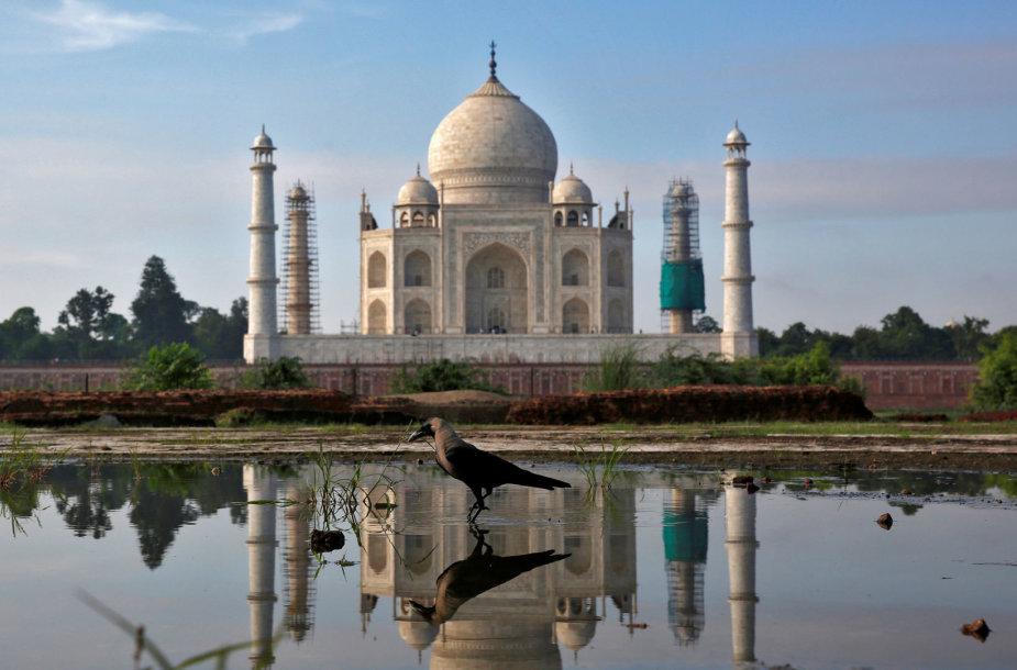 Tadž Mahal mauzoliejus Indijoje
