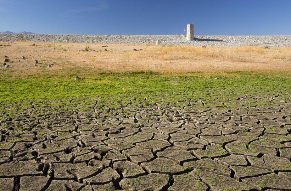 Klimato kaita nieko gero nežada