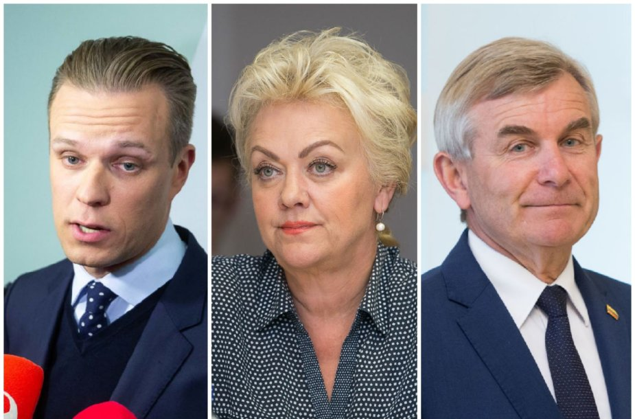 Gabrielius Landsbergis, Irina Rozova, Viktoras Pranckietis