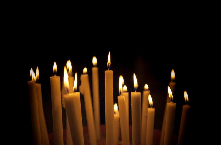 Žvakelės (asociatyvi nuotrauka)